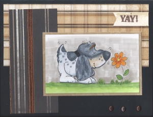 Retirement Card from Dogs